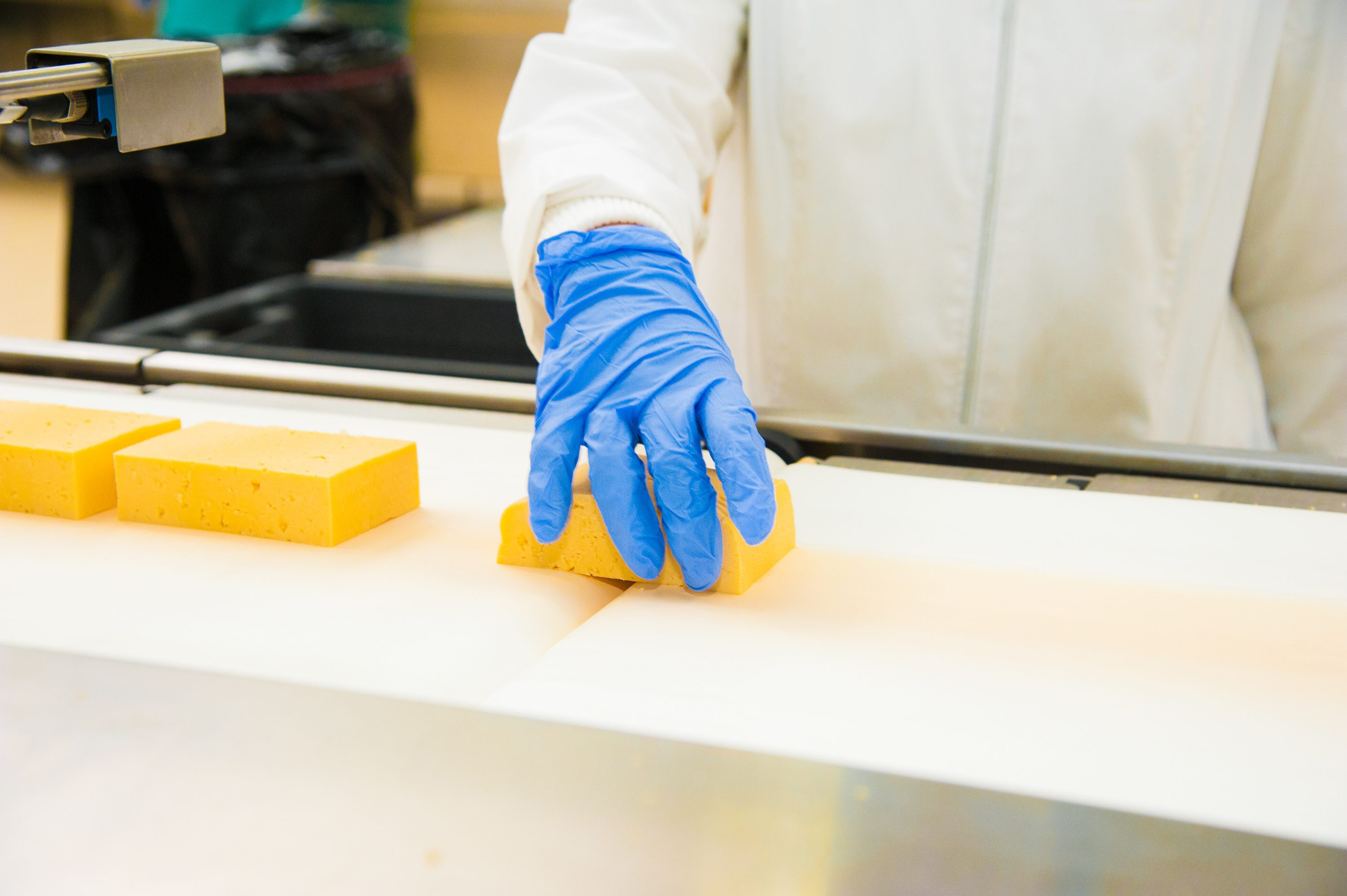 Technology Holds the Key to a Bright Future for Food Processing